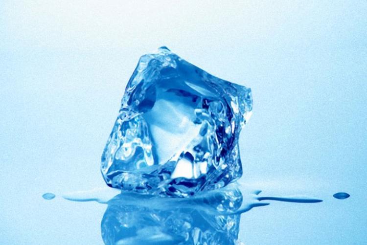 Congelando ovulo
